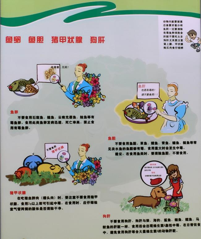 脏的中毒 食品安全漫画与挂图 食品专题图片